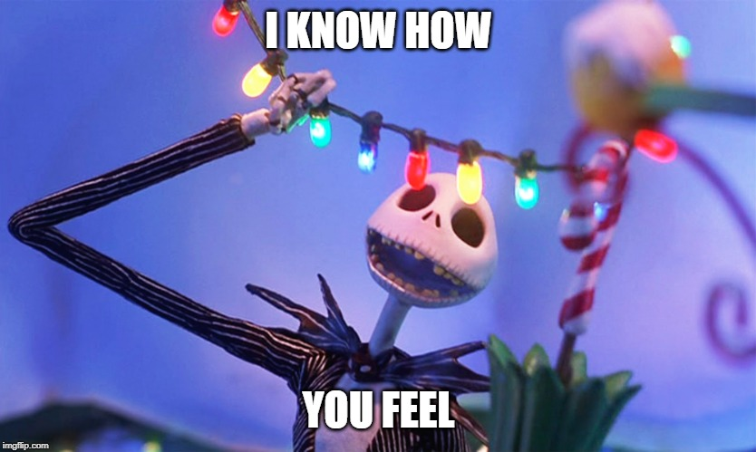 Nightmare before Christmas | I KNOW HOW YOU FEEL | image tagged in nightmare before christmas | made w/ Imgflip meme maker