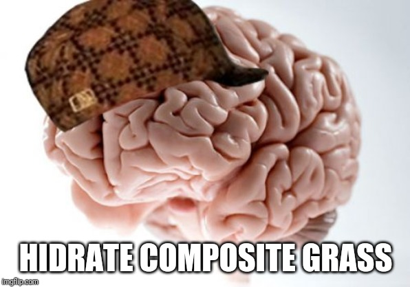 Scumbag Brain Meme | HIDRATE COMPOSITE GRASS | image tagged in memes,scumbag brain | made w/ Imgflip meme maker