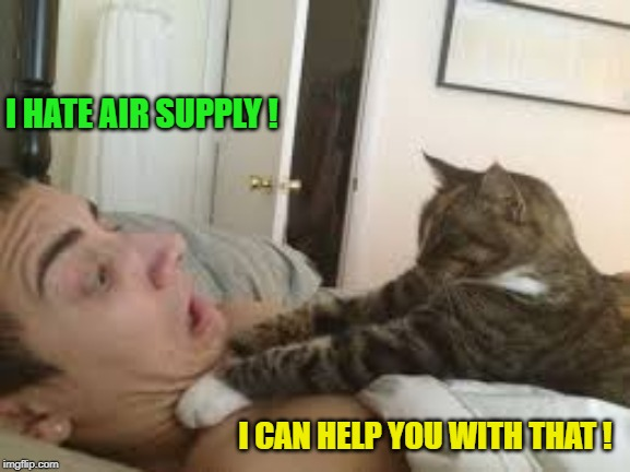 Cat Strangler | I HATE AIR SUPPLY ! I CAN HELP YOU WITH THAT ! | image tagged in cat strangler | made w/ Imgflip meme maker