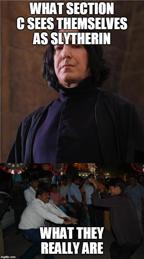 WHAT SECTION C SEES THEMSELVES AS SLYTHERIN WHAT THEY REALLY ARE | image tagged in snape | made w/ Imgflip meme maker