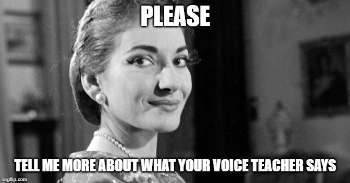 PLEASE TELL ME MORE ABOUT WHAT YOUR VOICE TEACHER SAYS | image tagged in maria callas | made w/ Imgflip meme maker