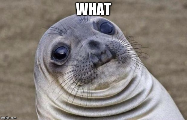 Awkward Moment Sealion Meme | WHAT | image tagged in memes,awkward moment sealion | made w/ Imgflip meme maker