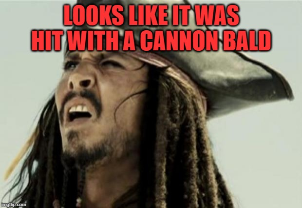 confused dafuq jack sparrow what | LOOKS LIKE IT WAS HIT WITH A CANNON BALD | image tagged in confused dafuq jack sparrow what | made w/ Imgflip meme maker