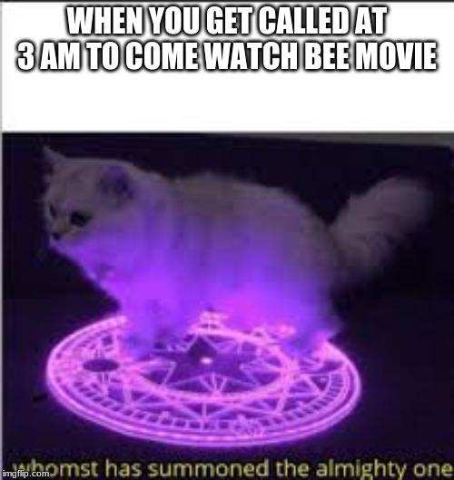 Whomst has Summoned the almighty one | WHEN YOU GET CALLED AT 3 AM TO COME WATCH BEE MOVIE | image tagged in whomst has summoned the almighty one | made w/ Imgflip meme maker