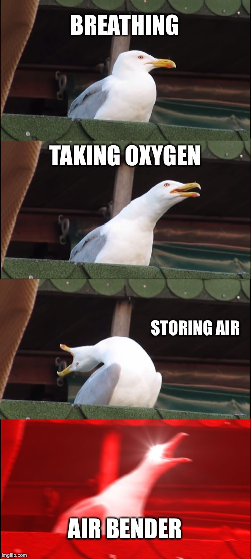 Inhaling Seagull |  BREATHING; TAKING OXYGEN; STORING AIR; AIR BENDER | image tagged in memes,inhaling seagull | made w/ Imgflip meme maker