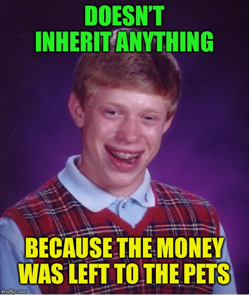 Bad Luck Brian Meme | DOESN'T INHERIT ANYTHING BECAUSE THE MONEY WAS LEFT TO THE PETS | image tagged in memes,bad luck brian | made w/ Imgflip meme maker