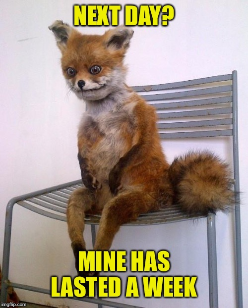 Stoned Fox | NEXT DAY? MINE HAS LASTED A WEEK | image tagged in stoned fox | made w/ Imgflip meme maker