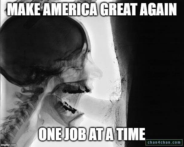 xray blowjob 2 | MAKE AMERICA GREAT AGAIN ONE JOB AT A TIME | image tagged in xray blowjob 2 | made w/ Imgflip meme maker