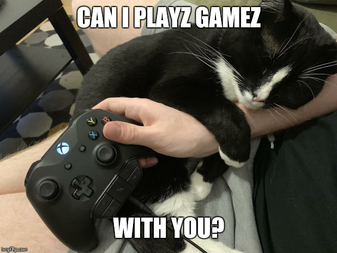 GAMER CAT | CAN I PLAYZ GAMEZ WITH YOU? | image tagged in cats,funny cats | made w/ Imgflip meme maker