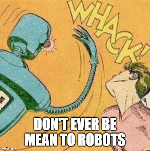 DON'T EVER BE MEAN TO ROBOTS | image tagged in robot slaps human | made w/ Imgflip meme maker