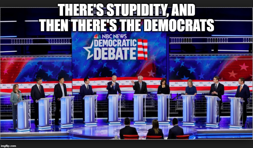 Democrat | THERE'S STUPIDITY, AND THEN THERE'S THE DEMOCRATS | image tagged in democrat | made w/ Imgflip meme maker