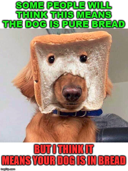 Could also be a dog superhero? Wonder Dog. | SOME PEOPLE WILL THINK THIS MEANS THE DOG IS PURE BREAD BUT I THINK IT MEANS YOUR DOG IS IN BREAD | image tagged in bread,dogs,funny meme | made w/ Imgflip meme maker