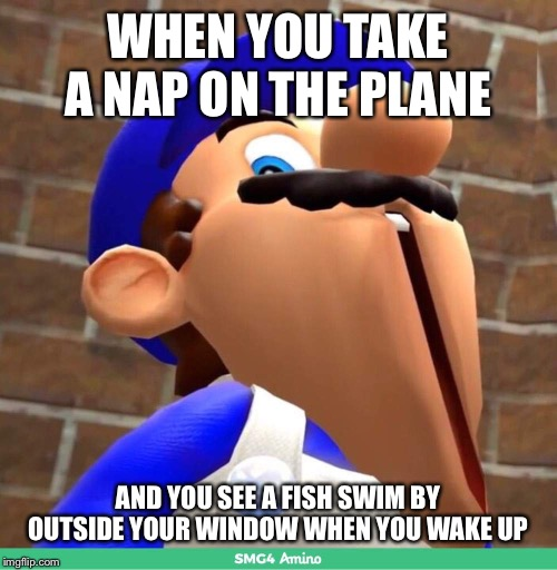 I Knew There Was Something Fishy! | WHEN YOU TAKE A NAP ON THE PLANE AND YOU SEE A FISH SWIM BY OUTSIDE YOUR WINDOW WHEN YOU WAKE UP | image tagged in smg4's face,fish,airplane,uh oh,nap | made w/ Imgflip meme maker