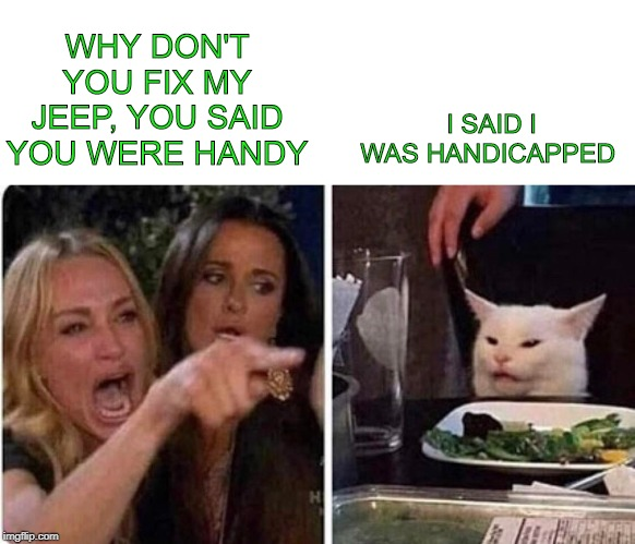 Lady screams at cat | WHY DON'T YOU FIX MY JEEP, YOU SAID YOU WERE HANDY I SAID I WAS HANDICAPPED | image tagged in lady screams at cat | made w/ Imgflip meme maker