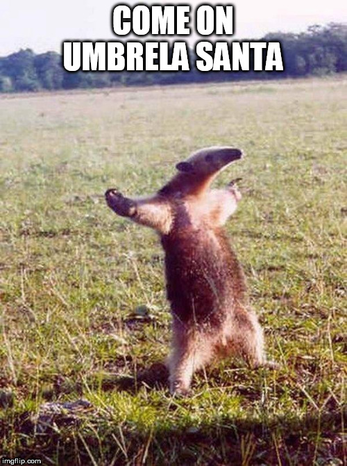 Fight me anteater | COME ON UMBRELA SANTA | image tagged in fight me anteater | made w/ Imgflip meme maker