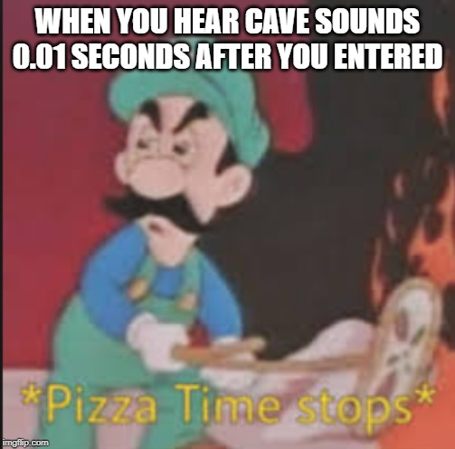 Pizza Time Stops | WHEN YOU HEAR CAVE SOUNDS 0.01 SECONDS AFTER YOU ENTERED | image tagged in pizza time stops | made w/ Imgflip meme maker