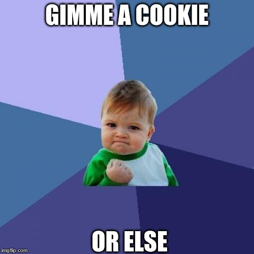 Success Kid Meme | GIMME A COOKIE OR ELSE | image tagged in memes,success kid | made w/ Imgflip meme maker