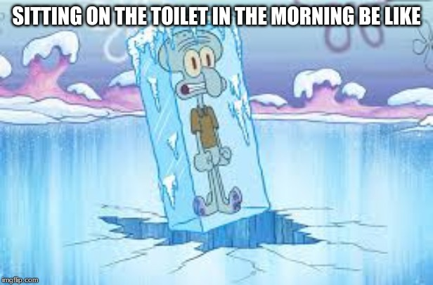 cold toliet not good :( | SITTING ON THE TOILET IN THE MORNING BE LIKE | image tagged in cold weather,cold,toliet | made w/ Imgflip meme maker
