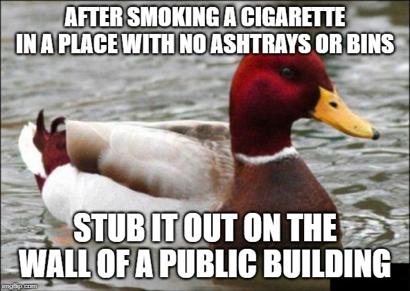 Malicious Advice Mallard | AFTER SMOKING A CIGARETTE IN A PLACE WITH NO ASHTRAYS OR BINS STUB IT OUT ON THE WALL OF A PUBLIC BUILDING | image tagged in memes,malicious advice mallard | made w/ Imgflip meme maker