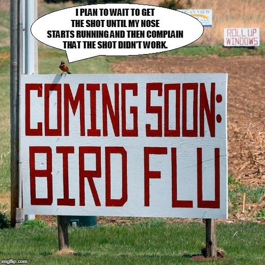I PLAN TO WAIT TO GET THE SHOT UNTIL MY NOSE STARTS RUNNING AND THEN COMPLAIN THAT THE SHOT DIDN'T WORK. | image tagged in bird flu bird | made w/ Imgflip meme maker