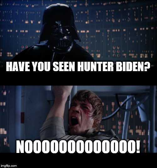 I'm sure he's just busy learning the oil business. |  HAVE YOU SEEN HUNTER BIDEN? NOOOOOOOOOOOOO! | image tagged in star wars no,hunter,biden,funny memes,politics,kittens | made w/ Imgflip meme maker