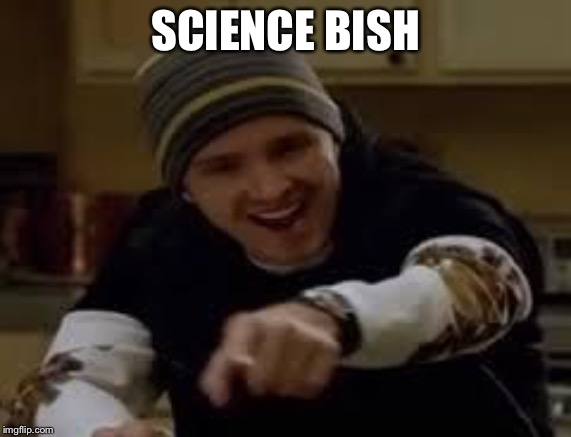 yeah science bitch | SCIENCE BISH | image tagged in yeah science bitch | made w/ Imgflip meme maker