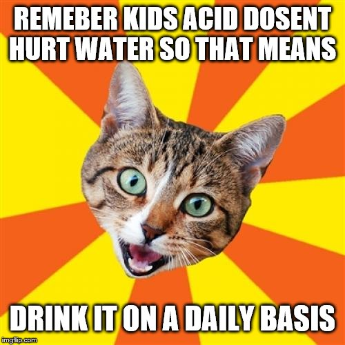 Bad Advice Cat Meme |  REMEBER KIDS ACID DOSENT HURT WATER SO THAT MEANS; DRINK IT ON A DAILY BASIS | image tagged in memes,bad advice cat | made w/ Imgflip meme maker