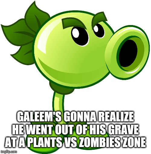 Repeater | GALEEM'S GONNA REALIZE HE WENT OUT OF HIS GRAVE AT A PLANTS VS ZOMBIES ZONE | image tagged in repeater | made w/ Imgflip meme maker