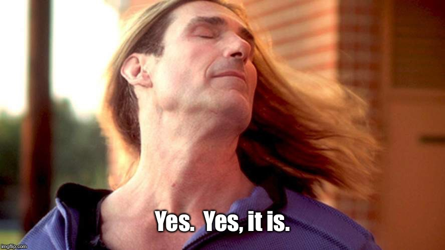 Fabio Hair Swish | Yes.  Yes, it is. | image tagged in fabio hair swish | made w/ Imgflip meme maker