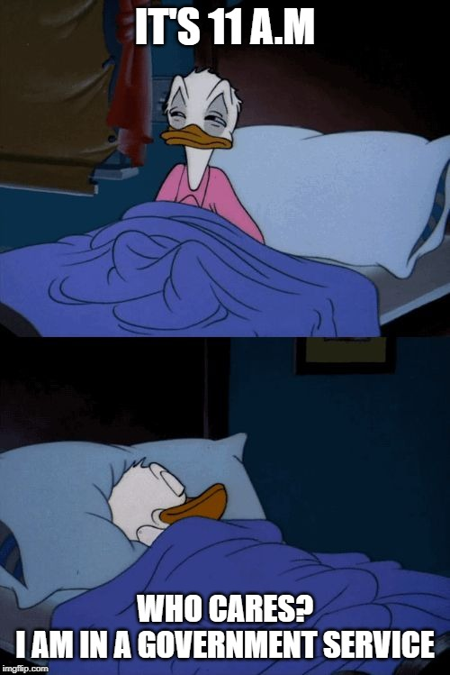 Sleeping Donald Duck | IT'S 11 A.M WHO CARES? I AM IN A GOVERNMENT SERVICE | image tagged in sleeping donald duck | made w/ Imgflip meme maker