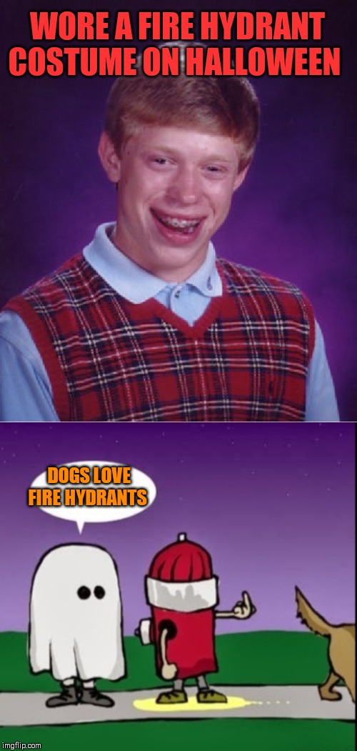 The warmth was not from a fire ;) | WORE A FIRE HYDRANT COSTUME ON HALLOWEEN DOGS LOVE FIRE HYDRANTS | image tagged in memes,bad luck brian,fire hydrant,halloween,trick or treat,44colt | made w/ Imgflip meme maker