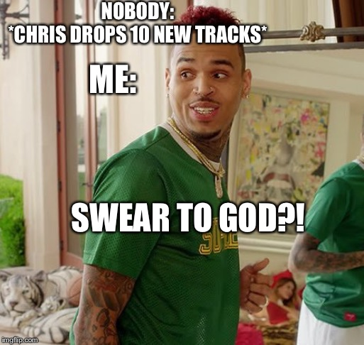 STG ?‼️ |  NOBODY: *CHRIS DROPS 10 NEW TRACKS*; ME:; SWEAR TO GOD?! | image tagged in chris brown,funny memes,memes,dank memes,original meme | made w/ Imgflip meme maker