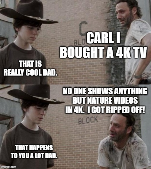 Rick and Carl | CARL I BOUGHT A 4K TV THAT IS REALLY COOL DAD. NO ONE SHOWS ANYTHING BUT NATURE VIDEOS IN 4K.  I GOT RIPPED OFF! THAT HAPPENS TO YOU A LOT D | image tagged in memes,rick and carl | made w/ Imgflip meme maker