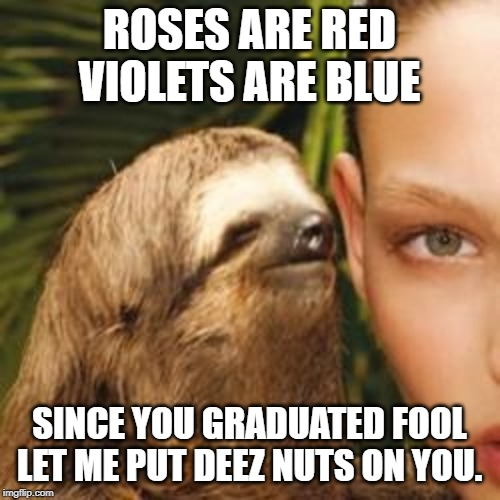 rape sloth | ROSES ARE RED VIOLETS ARE BLUE SINCE YOU GRADUATED FOOL LET ME PUT DEEZ NUTS ON YOU. | image tagged in rape sloth | made w/ Imgflip meme maker