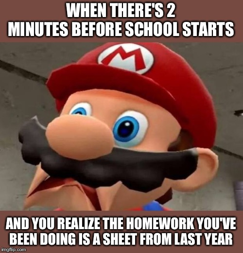 Uh Oh, Spaghettio's! |  WHEN THERE'S 2 MINUTES BEFORE SCHOOL STARTS; AND YOU REALIZE THE HOMEWORK YOU'VE BEEN DOING IS A SHEET FROM LAST YEAR | image tagged in mario wtf,homework,school,ah shit here we go again | made w/ Imgflip meme maker