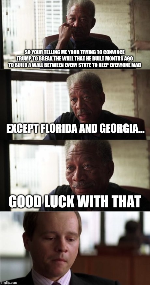 Morgan Freeman Good Luck |  SO YOUR TELLING ME YOUR TRYING TO CONVINCE TRUMP TO BREAK THE WALL THAT HE BUILT MONTHS AGO TO BUILD A WALL BETWEEN EVERY STATE TO KEEP EVERYONE MAD; EXCEPT FLORIDA AND GEORGIA... GOOD LUCK WITH THAT | image tagged in memes,morgan freeman good luck | made w/ Imgflip meme maker