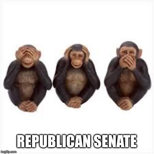 REPUBLICAN SENATE | image tagged in see no evil hear no evil speak no evil | made w/ Imgflip meme maker