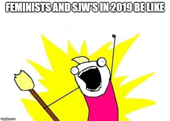 X All The Y | FEMINISTS AND SJW'S IN 2019 BE LIKE | image tagged in memes,x all the y | made w/ Imgflip meme maker