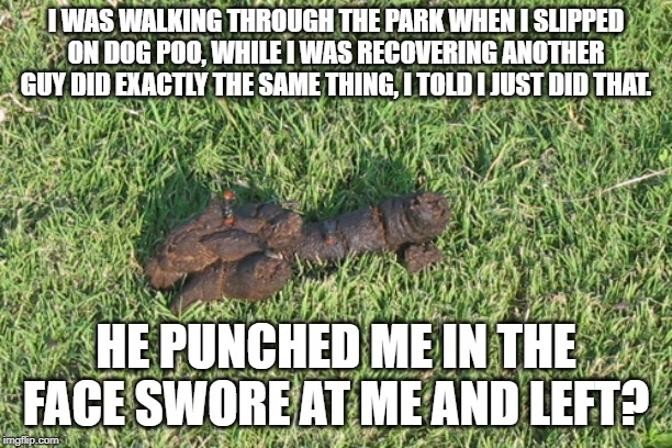 dog poop |  I WAS WALKING THROUGH THE PARK WHEN I SLIPPED ON DOG POO, WHILE I WAS RECOVERING ANOTHER GUY DID EXACTLY THE SAME THING, I TOLD I JUST DID THAT. HE PUNCHED ME IN THE FACE SWORE AT ME AND LEFT? | image tagged in dog poop | made w/ Imgflip meme maker