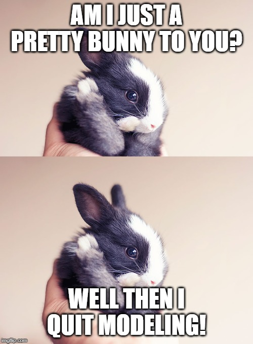 Bunny Meme | AM I JUST A PRETTY BUNNY TO YOU? WELL THEN I QUIT MODELING! | image tagged in cute animals | made w/ Imgflip meme maker