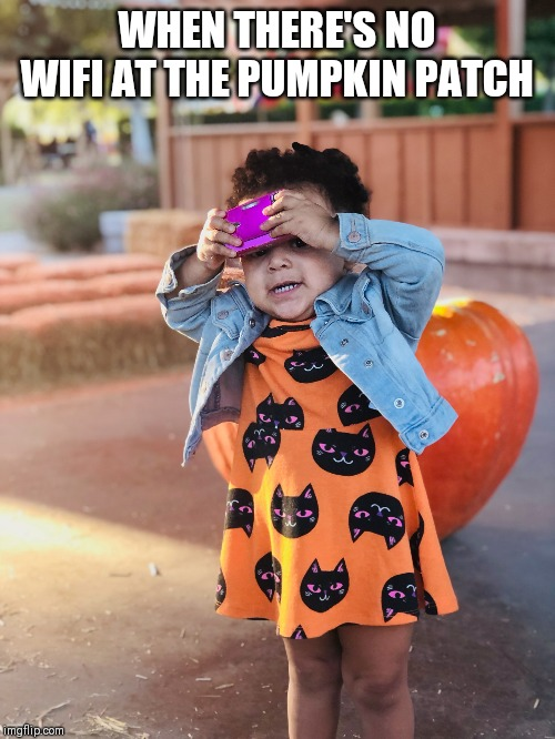 No WiFi | WHEN THERE'S NO WIFI AT THE PUMPKIN PATCH | image tagged in wifi,pumpkin patch | made w/ Imgflip meme maker