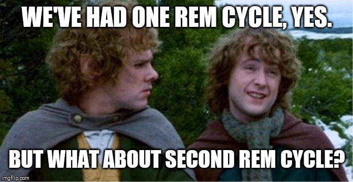Merry and Pippin |  WE'VE HAD ONE REM CYCLE, YES. BUT WHAT ABOUT SECOND REM CYCLE? | image tagged in merry and pippin,funny | made w/ Imgflip meme maker