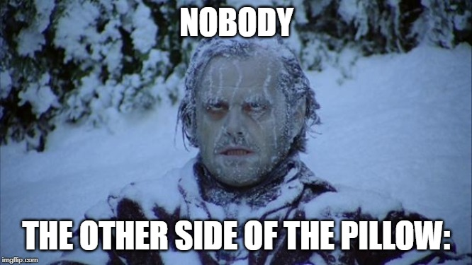 Cold | NOBODY THE OTHER SIDE OF THE PILLOW: | image tagged in cold | made w/ Imgflip meme maker