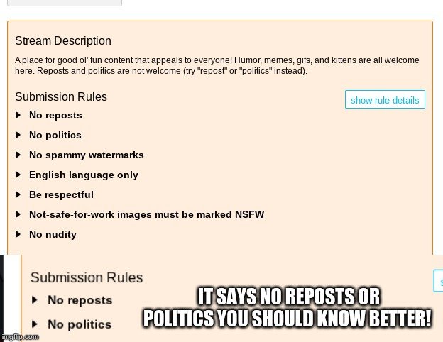 IT SAYS NO REPOSTS OR POLITICS YOU SHOULD KNOW BETTER! | image tagged in rules,imgflip users,screenshot,memes | made w/ Imgflip meme maker
