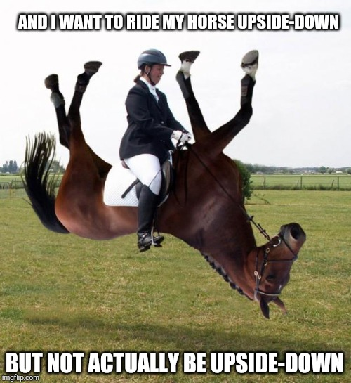 AND I WANT TO RIDE MY HORSE UPSIDE-DOWN BUT NOT ACTUALLY BE UPSIDE-DOWN | image tagged in horse upside down | made w/ Imgflip meme maker