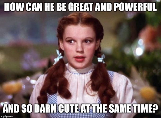 Dorothy wiz of oz | HOW CAN HE BE GREAT AND POWERFUL AND SO DARN CUTE AT THE SAME TIME? | image tagged in dorothy wiz of oz | made w/ Imgflip meme maker