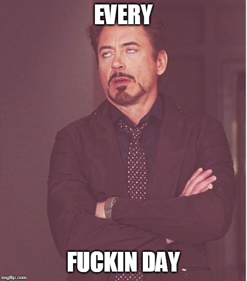 Face You Make Robert Downey Jr Meme | EVERY F**KIN DAY | image tagged in memes,face you make robert downey jr | made w/ Imgflip meme maker