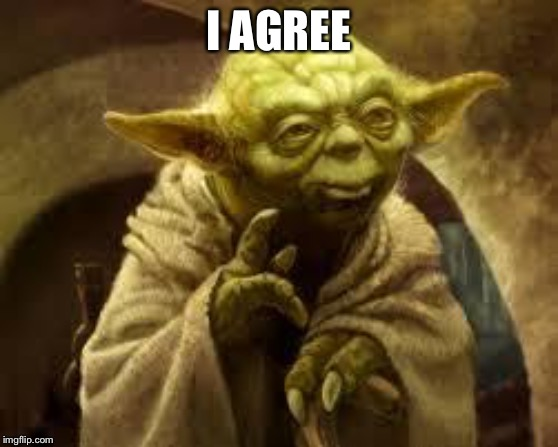 yoda | I AGREE | image tagged in yoda | made w/ Imgflip meme maker