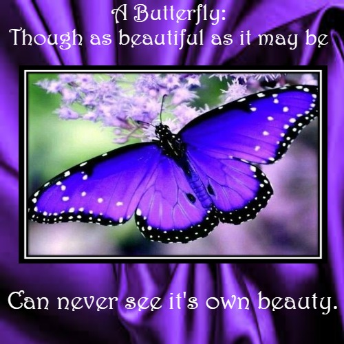 Lessons from a Butterfly | A Butterfly: Though as beautiful as it may be | Can never see it's own beauty. | image tagged in demotivationals,inspirational,beauty,encouragement | made w/ Imgflip demotivational maker