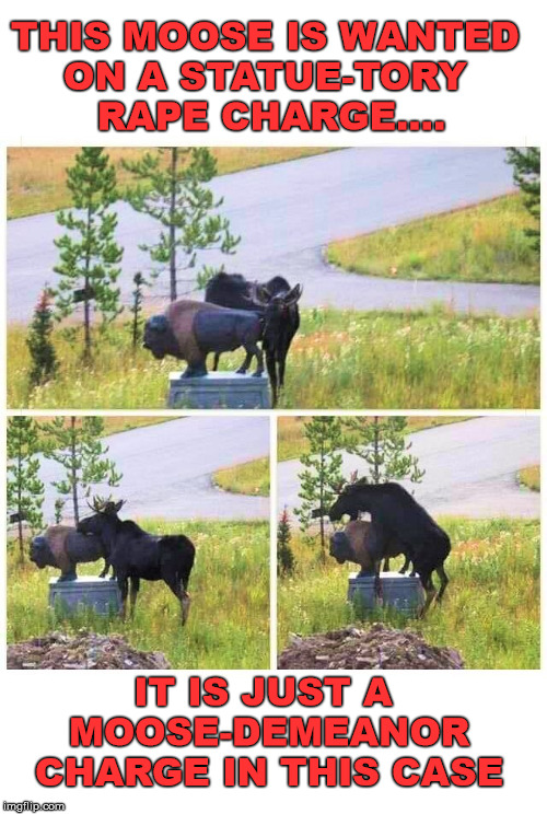Bad pun alert ... Dad joke ahead. | THIS MOOSE IS WANTED ON A STATUE-TORY RAPE CHARGE.... IT IS JUST A MOOSE-DEMEANORCHARGE IN THIS CASE | image tagged in moose,statue,wildlife,montana | made w/ Imgflip meme maker